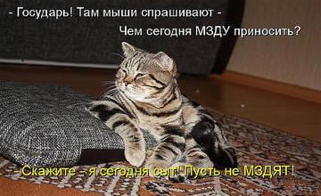 http://s1.uplds.ru/t/URzXv.jpg